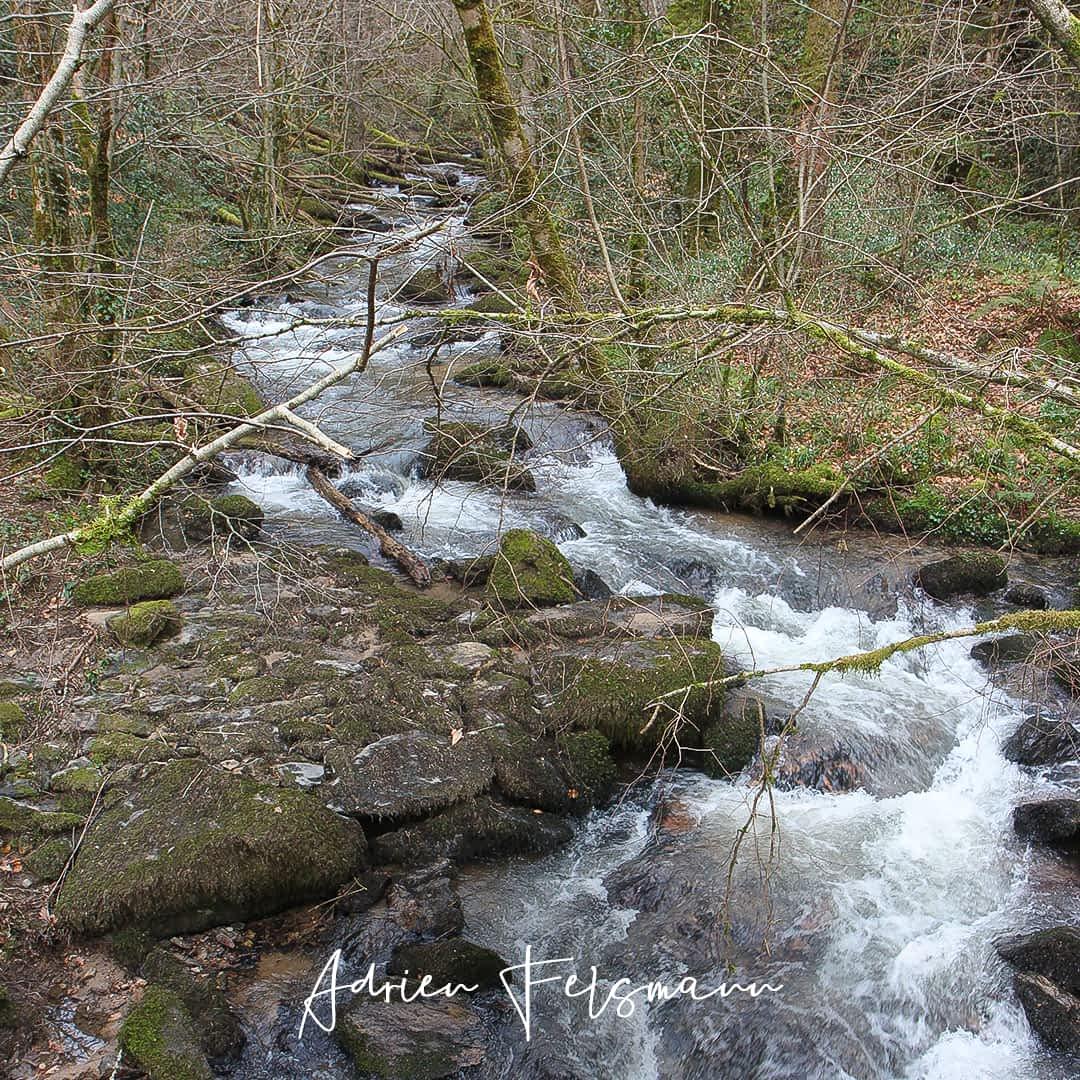 Rivière le Lézert en Aveyron
