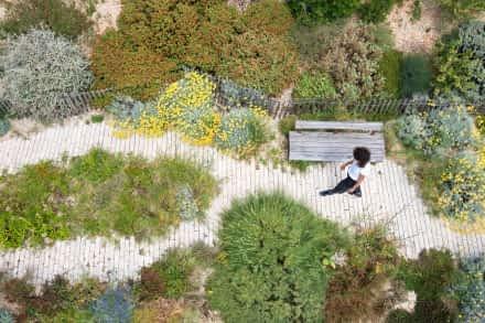Jardin des migrations à Marseille