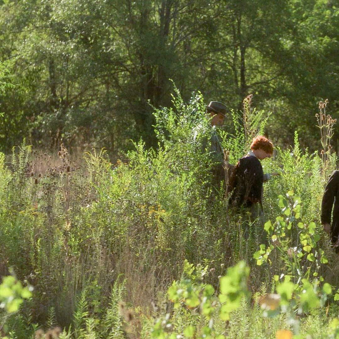 Les personnages de la série au milieu de la prairie naturelle