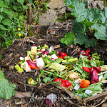Le compostage de surface, une technique pour les paresseux ?